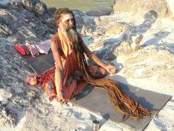 yogi himalaya